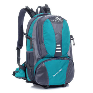 Teenage School Bags and Backpacks pictures & photos