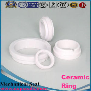 Industrial Al2O3 Alumina Ceramic Mechanical Seal pictures & photos