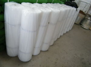 Plastic Flat Net, Fence Net, Oyster Bag Net pictures & photos