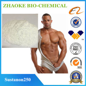The Best Quality Sustanon 250 Testosteron Mixed Anabolic Steroid Drugs pictures & photos