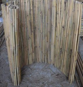 Bamboo Fencing (BF004) pictures & photos