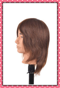 Brown Color Brazilian Hair Training Head 16inches for Style Training pictures & photos