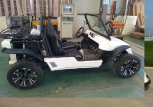 2-Seater UTV Electric Powered by 5kw Motor Hot Pretty Beautiful pictures & photos