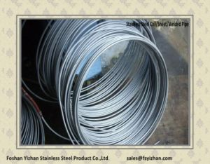 ASTM A249 Stainless Steel Pipe for Air Heat Exchanger pictures & photos