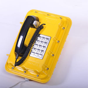 Waterproof Caller ID Telephone