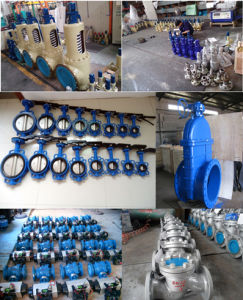 Wafer Stainless Steel Butterfly Valve with Flange pictures & photos