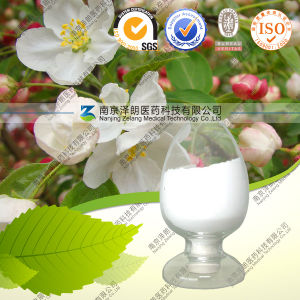 High Quality 100% Natural Tripterygium Wilfordii Hook Extract Triptophenolide pictures & photos