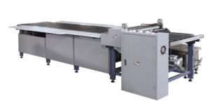 Paper Gluing Machine for Rigid Box pictures & photos
