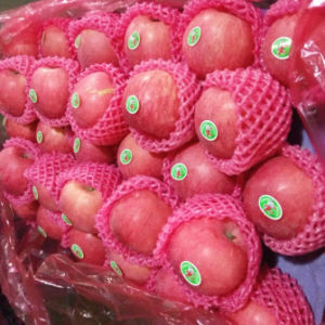 Good Quality Fresh FUJI Apple Wholesale Price pictures & photos