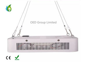 300W Full Spectrum LED Plant Grow Light for Hydroponics System Grow Room Beam Angle 110 Degree pictures & photos