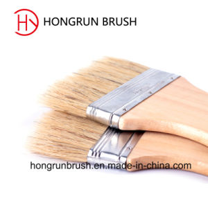 Scrub Paint Brush (HYS0064) pictures & photos