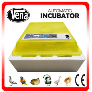 Newest Fully Automatic Cheap Digital Mini Incubator for Sale Va-48 pictures & photos