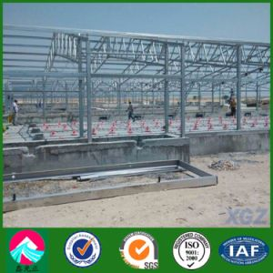 Customized Prefabricated Light Steel Poultry House/Chicken House (XGZ-A035) pictures & photos