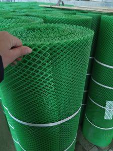 Green Hexagonal Plastic Net