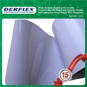 PVC Flex Banner Advertising Backlit 500*300/18*12 440g pictures & photos