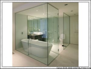 Tempered Glass for Window/Door/Shower Room/Curtain Wall pictures & photos