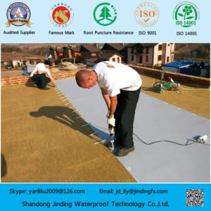 Reinforced PVC Membrane Used for Waterproofing of Steel Board Roof pictures & photos