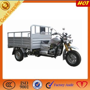 New Cargo Motor Trike pictures & photos