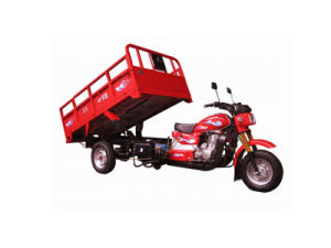 New Motorcycle Trike Tricycle Car pictures & photos