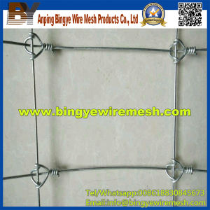 Farm Field Fence Galvanized Cattle Fence From Bingye pictures & photos