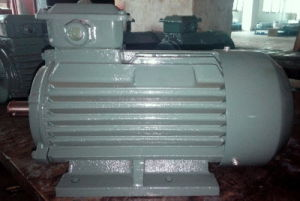 Premium Efficiency (IE3) 0.75-200kw Three Phase Electric Motor pictures & photos