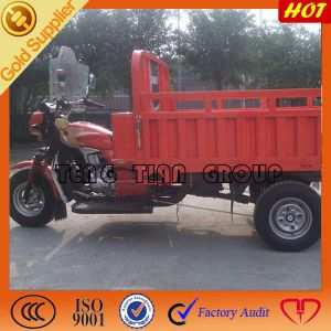 China Supplier of Three Wheel Cargo Motorcycles in China pictures & photos