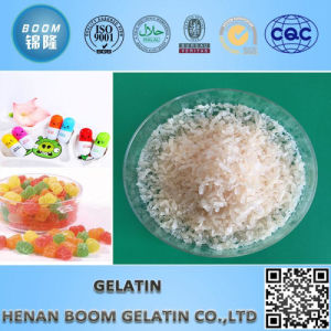 Food Addtivie Gelatin Granular for Human Consumption pictures & photos