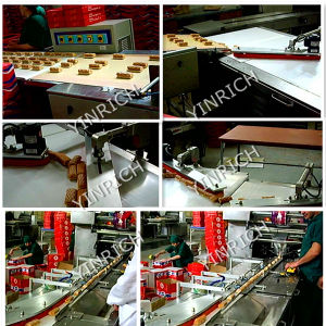Automatic Feeding and Pillow-Type Packing Machine (DXD1000-1, 1000-2) pictures & photos