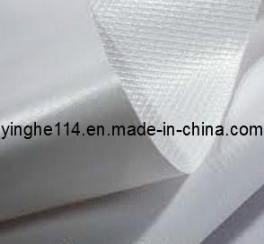 Backlit PVC Flex Banner (yinghe, Mckal) pictures & photos