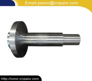 OEM Machining Service Oil Accessories API Flange End pictures & photos