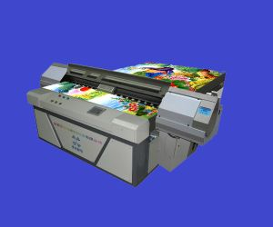Newly Listed EVA Sandal Printer (4 colors) pictures & photos