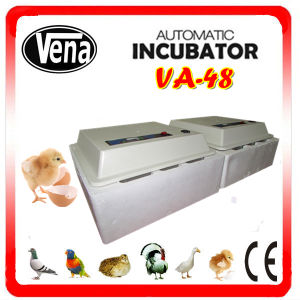 High Efficient Chicken Incubator/Automatic Chicken Incubator for Sale/Mini Chicken Egg Incubator (CE approved) pictures & photos