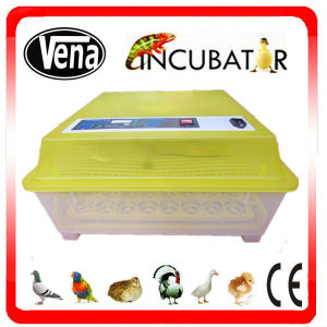2014 Energy-Saving Digital Mini Incubator CE Approved pictures & photos