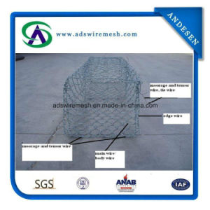 3.0mmx80X100mm Direct Factory of Gabion Mesh pictures & photos
