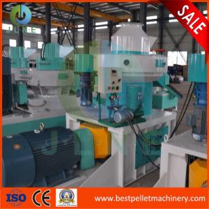 Thailand/ Viet Nam/ Indonesia Biomass Palm Fiber Pellet Machine pictures & photos