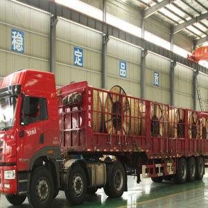 ASTM/BS/CSA All Aluminium Alloy Conductor Aluminium Alloy Stranded AAAC pictures & photos