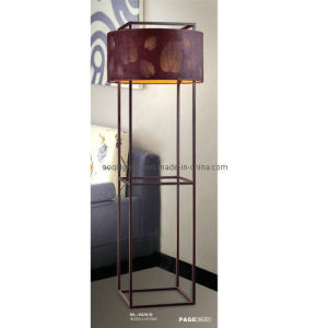 Modern and Fashion Iron Floor Lamp (ML-8026/B) pictures & photos