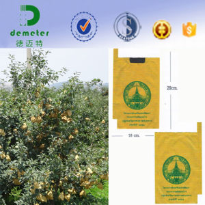 Waterproof Environmental Paper Protection Bags for Mango Growing Fruit pictures & photos