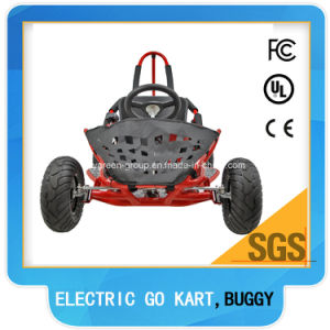 1000watt Brushless Motor Racing Go Kart pictures & photos