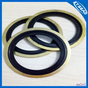 3/2lips Combinationed Gaskets /Bonded Gaskets pictures & photos