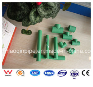 High Quality Plastic Water Supply PPR Pipe and Fitting pictures & photos