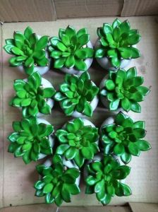 Best Selling Artificial Plants of Succulent Gu20170305113541 pictures & photos