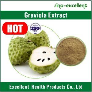 100% Natural Guanabana Extract Powder