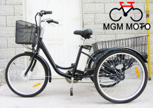 En15194 Three Wheels Electric Bike Cheao Elecrtric Tricycle pictures & photos