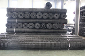 Plastic Geogrid G2020kn for Highway or Projects pictures & photos