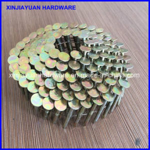 Yellow Zinc Dichromate Electro Galvanized Coil Roofing Nail 1 1/4′′ pictures & photos