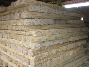 Tonkin Bamboo Cane 305cm 24/26mm pictures & photos