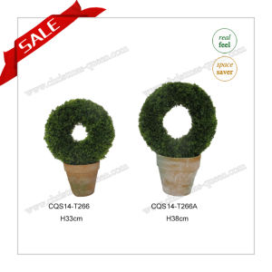 H33-38cm Making for Home Decoration Plastic Bonsai Flowers pictures & photos