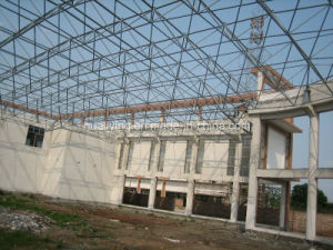 Roof Grid Cover Space Frame/Steel Structure pictures & photos