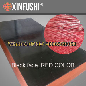 Red Paint 14mm Black Plywood to Tailand pictures & photos